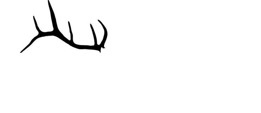 Elkhorn Technology